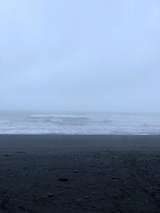 Black beach de Reynisfjana