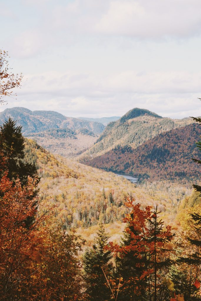 Parc National de la Jacques Cartier : Québec